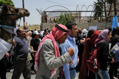 Ritt durch Ramallah: Einige reiten auch auf Kamelen durch die Stadt.