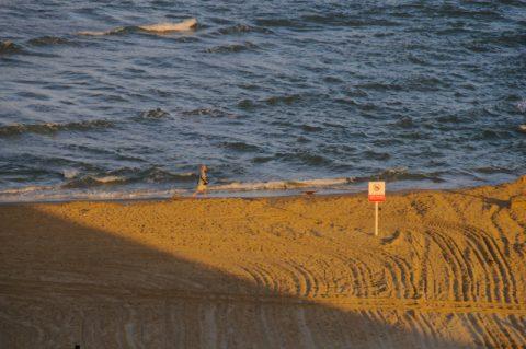 Strandläufer: Die Morgensonne kitzelt die Strandsportler.
